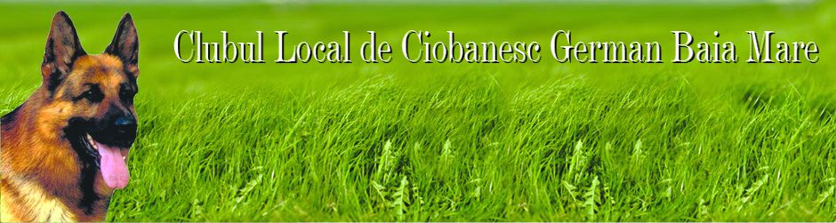 Clubul Local de Ciobanesc German Baia Mare